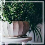 il giardino: tu e il mondo che ti circonda